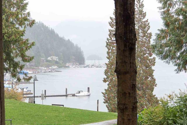 2391 Panorama Drive, North Vancouver, BC V7G 1V4 (#R2215081) :: HomeLife Glenayre Realty