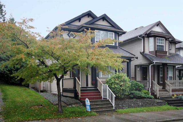20620 88 Avenue, Langley, BC V1M 3X2 (#R2215157) :: HomeLife Glenayre Realty