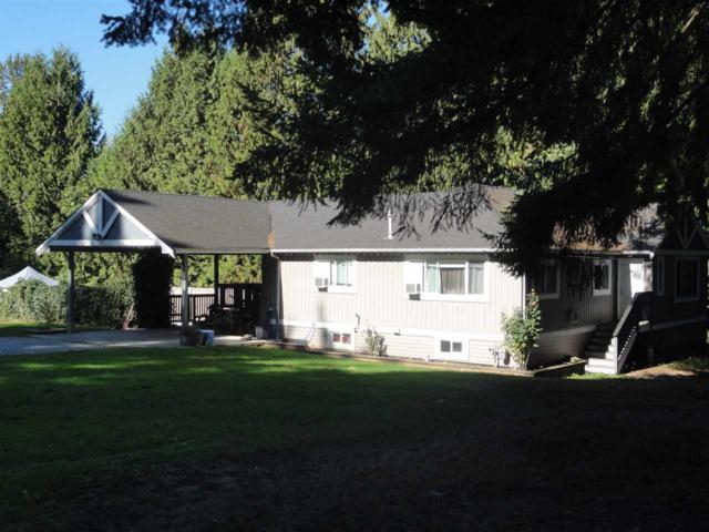 8669 Gaglardi Street, Mission, BC V4S 1B2 (#R2215616) :: Titan Real Estate - Re/Max Little Oak Realty