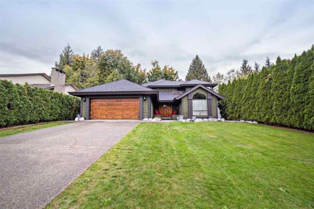 32965 Whidden Avenue, Mission, BC V2V 6G4 (#R2215658) :: Titan Real Estate - Re/Max Little Oak Realty