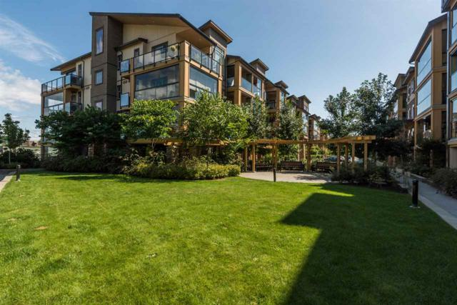 12655 190A Street #410, Pitt Meadows, BC V3Y 0E9 (#R2216075) :: Vallee Real Estate Group