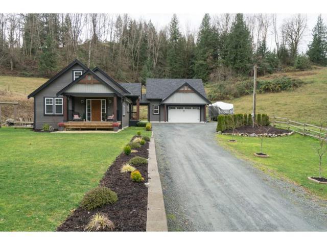 48832 Elk View Road, Ryder Lake, BC V4Z 1G7 (#R2225173) :: Re/Max Select Realty
