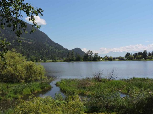 9010 Shook Road, Mission, BC V2V 7M1 (#R2226059) :: Re/Max Select Realty