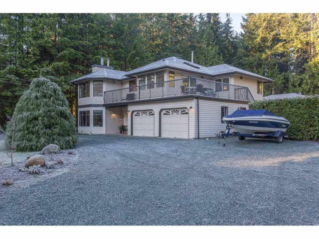 29575 Taise Place, Mission, BC V4S 1B8 (#R2226620) :: Titan Real Estate - Re/Max Little Oak Realty