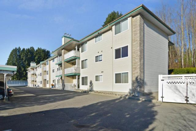7265 Haig Street #204, Mission, BC V2V 6N3 (#R2227129) :: Titan Real Estate - Re/Max Little Oak Realty