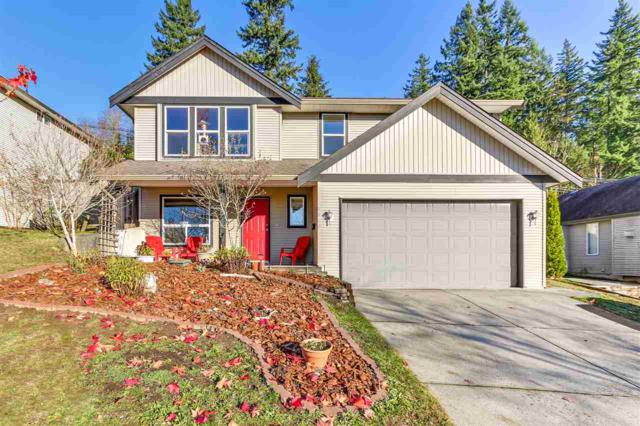 8330 Herar Lane, Mission, BC V2V 7G1 (#R2227412) :: Titan Real Estate - Re/Max Little Oak Realty