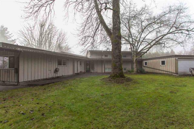 5741 172 Street, Surrey, BC V3S 3Z4 (#R2227607) :: Titan Real Estate - Re/Max Little Oak Realty