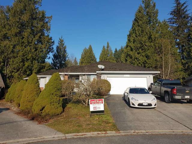 8153 Elk Terrace, Mission, BC V2V 6M9 (#R2227966) :: Titan Real Estate - Re/Max Little Oak Realty