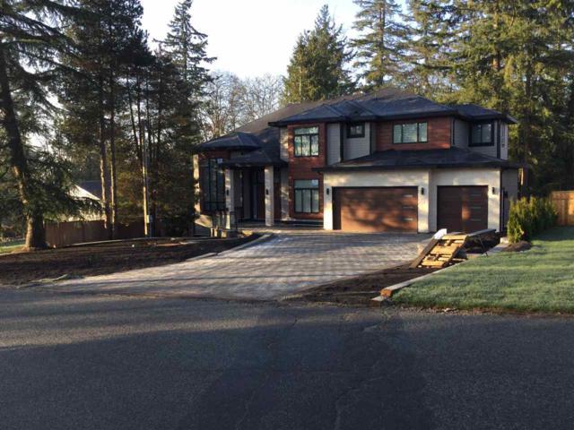 5649 182 Street, Surrey, BC V3S 4M5 (#R2228069) :: Titan Real Estate - Re/Max Little Oak Realty