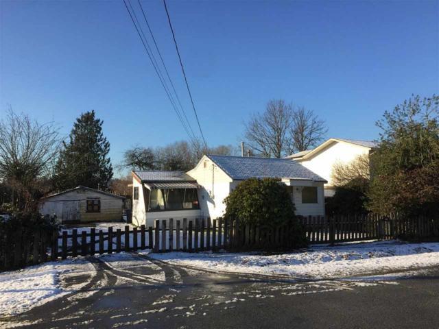 11513 125A Street, Surrey, BC V3V 5A6 (#R2229037) :: Re/Max Select Realty