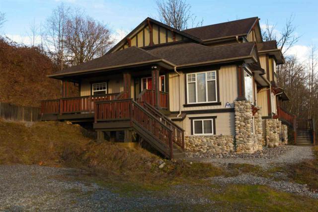 9790 276 Street, Maple Ridge, BC V2W 1R1 (#R2231351) :: West One Real Estate Team