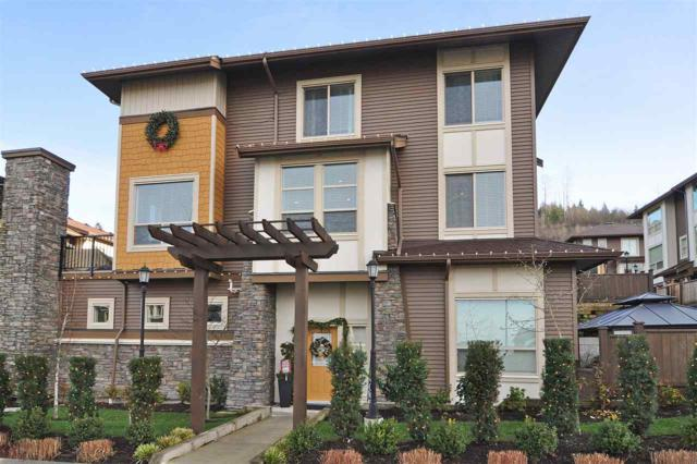 10480 248 Street #60, Maple Ridge, BC V2W 0H9 (#R2232872) :: Vancouver House Finders