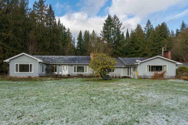 49575 Elk View Road, Ryder Lake, BC V4Z 1E8 (#R2236176) :: Re/Max Select Realty