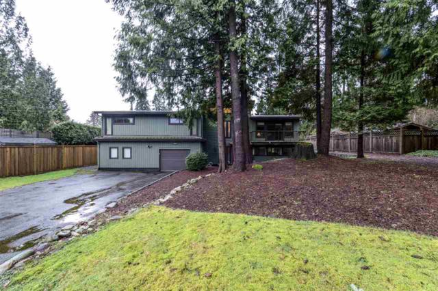 4065 Mt Seymour Parkway, North Vancouver, BC V7G 1Z8 (#R2236979) :: Re/Max Select Realty