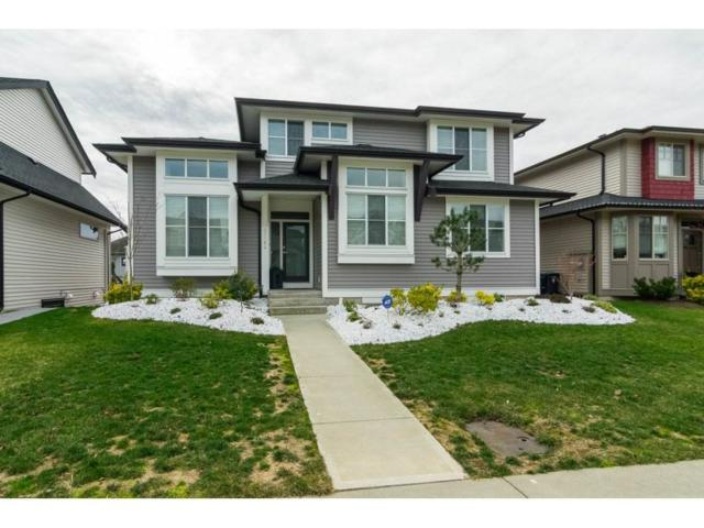 27164 35A Avenue, Langley, BC V4W 0A4 (#R2238961) :: Homes Fraser Valley