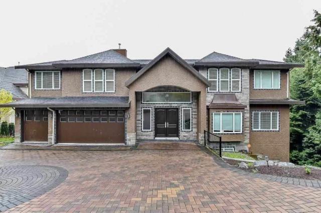 14112 Trites Road, Surrey, BC V3X 3E8 (#R2239047) :: Homes Fraser Valley