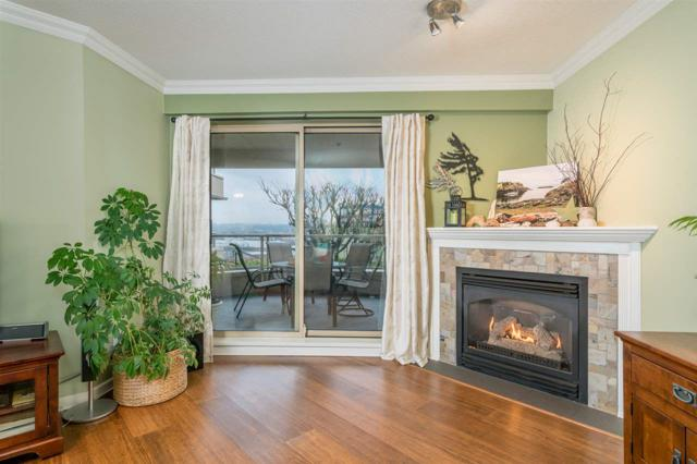 78 Richmond Street #201, New Westminster, BC V3L 5T2 (#R2239169) :: Re/Max Select Realty