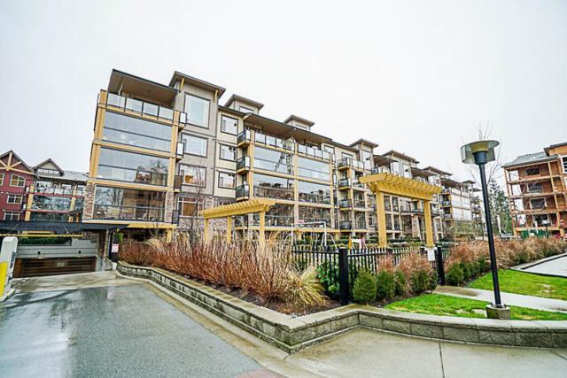 8258 207A Street #556, Langley, BC V2Y 0N4 (#R2241331) :: Homes Fraser Valley