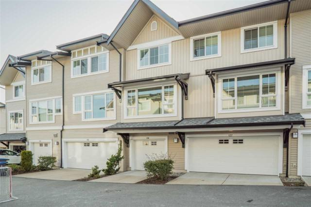 2450 161A Street #136, Surrey, BC V3Z 8K4 (#R2241395) :: Re/Max Select Realty