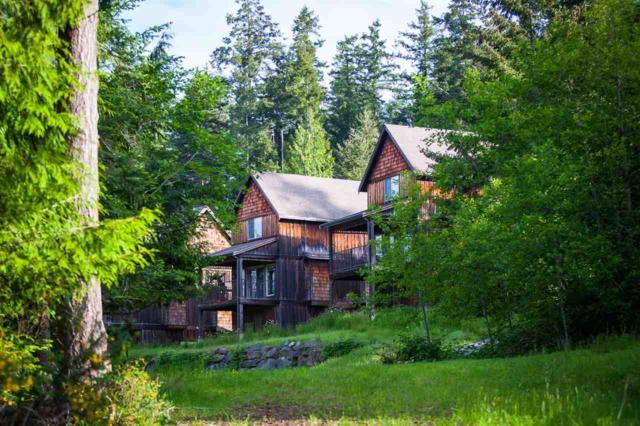 315 Robinson Road #14, Salt Spring Island, BC V8K 1P7 (#R2246302) :: West One Real Estate Team