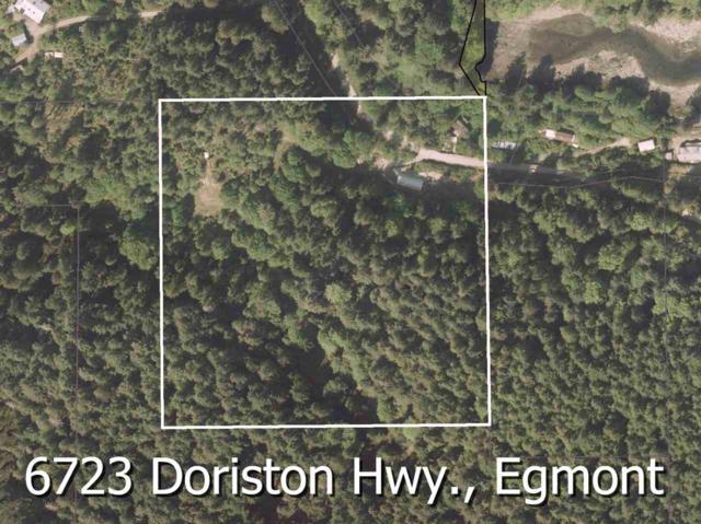 6723 Doriston Highway, Egmont, BC V0N 3A5 (#R2248473) :: Vancouver House Finders