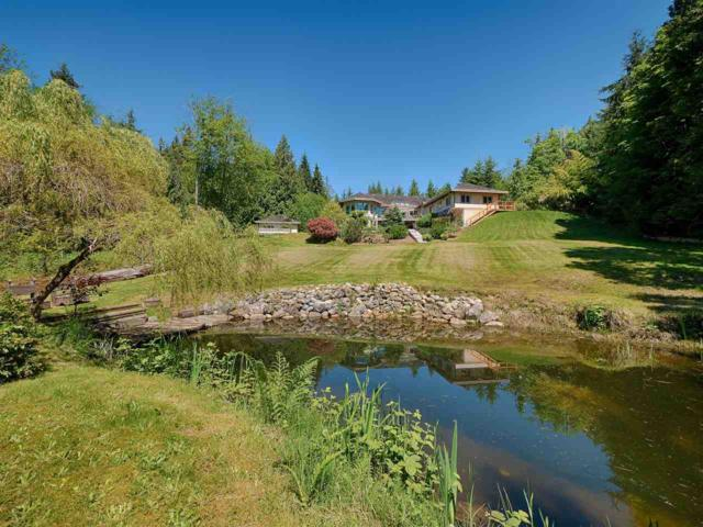 849 Maskell Road, Roberts Creek, BC V0N 2W6 (#R2251980) :: Linsey Hulls Real Estate
