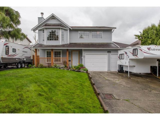 26594 28A Avenue, Langley, BC V4W 3A7 (#R2253889) :: Titan Real Estate - Re/Max Little Oak Realty