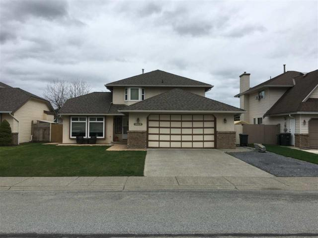 19612 Somerset Drive, Pitt Meadows, BC V3Y 2L4 (#R2254758) :: West One Real Estate Team
