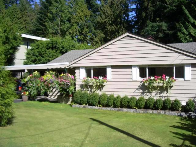 2980 Princess Avenue, North Vancouver, BC V7N 2C8 (#R2254897) :: Re/Max Select Realty