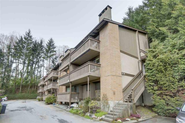 1179 Lillooet Road, North Vancouver, BC V7J 3H7 (#R2255742) :: West One Real Estate Team