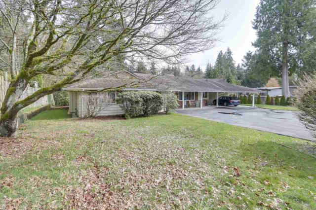 892 Margaree Place, West Vancouver, BC V7T 2J6 (#R2256348) :: West One Real Estate Team