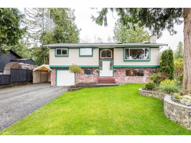 20276 43A Avenue, Langley, BC V3A 5L8 (#R2256548) :: West One Real Estate Team