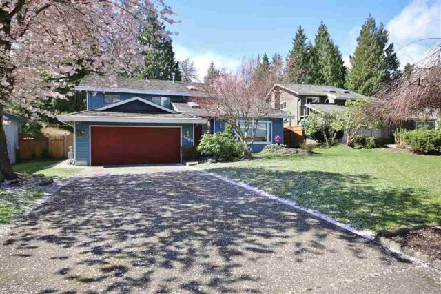 11609 Summit Crescent, Delta, BC V4E 2Z1 (#R2256867) :: West One Real Estate Team