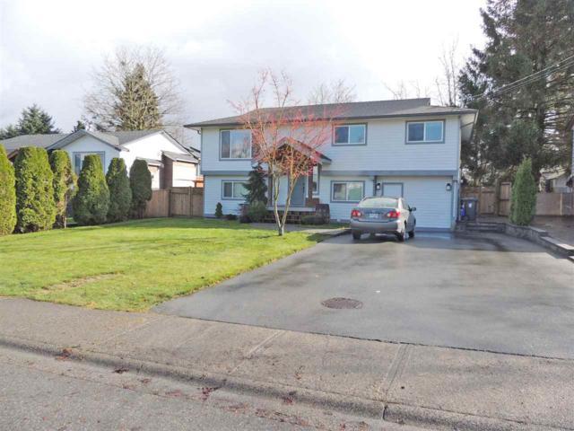 26972 28 Avenue, Langley, BC V4W 3A2 (#R2256886) :: Titan Real Estate - Re/Max Little Oak Realty