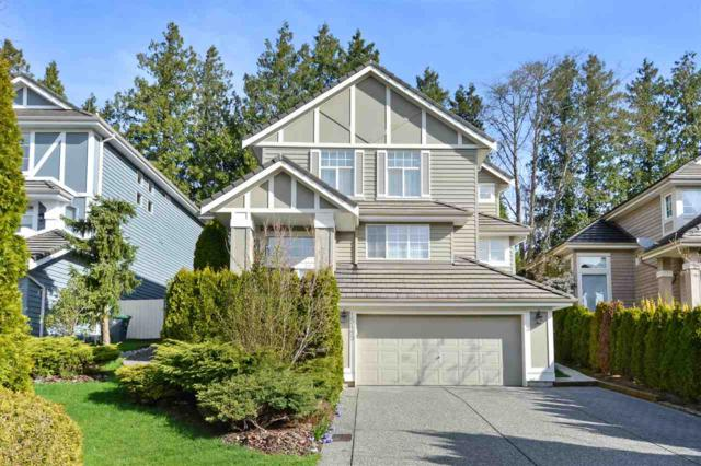 15489 Rosemary Heights Crescent, Surrey, BC V3Z 0K2 (#R2257163) :: West One Real Estate Team
