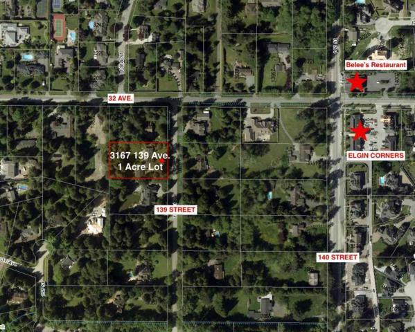 3167 139 Street, Surrey, BC V4P 2B9 (#R2257192) :: West One Real Estate Team
