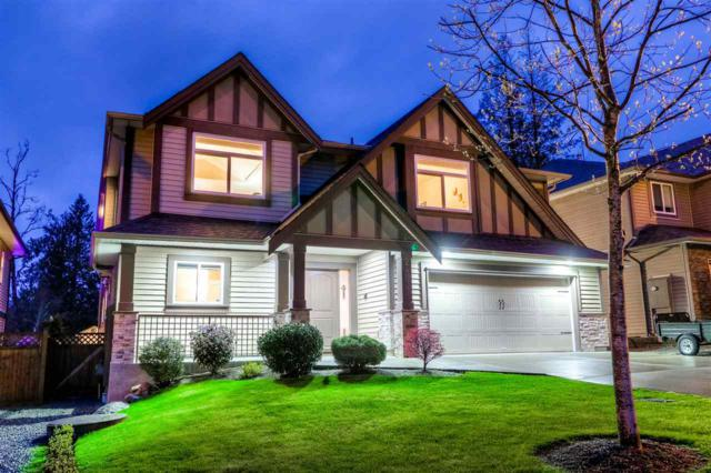24937 109 Avenue, Maple Ridge, BC V2W 0E3 (#R2257453) :: West One Real Estate Team