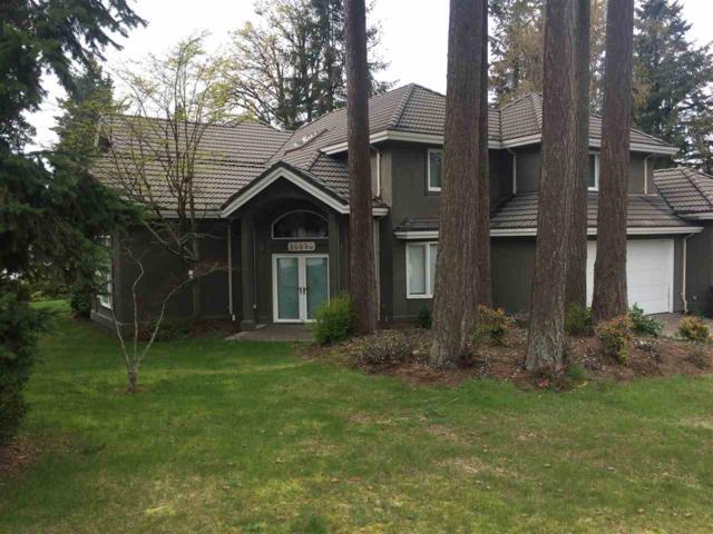 14099 28A Avenue, Surrey, BC V4P 2H8 (#R2257531) :: West One Real Estate Team