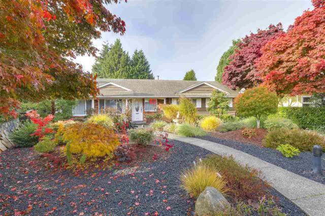 5508 Brookdale Court, Burnaby, BC V5B 2C6 (#R2257939) :: Simon King Real Estate Group