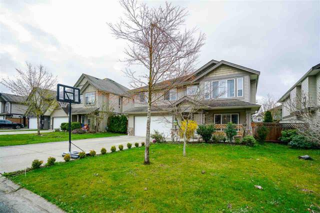 33068 Phelps Avenue, Mission, BC V2V 7R1 (#R2257988) :: West One Real Estate Team
