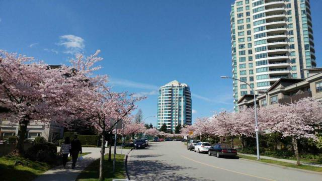 6622 Southoaks Crescent #1306, Burnaby, BC V5E 4K2 (#R2258025) :: Vancouver House Finders