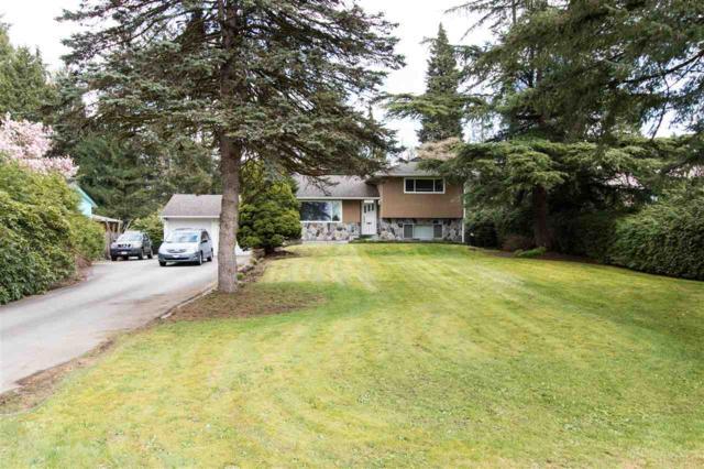 12150 206 Street, Maple Ridge, BC V2X 1T7 (#R2258187) :: West One Real Estate Team