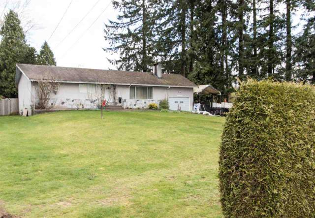 12124 206 Street, Maple Ridge, BC V2X 1T7 (#R2258207) :: West One Real Estate Team