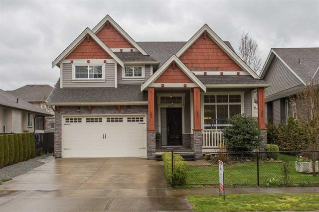 8438 Fairbanks Street, Mission, BC V2V 3K5 (#R2258214) :: Titan Real Estate - Re/Max Little Oak Realty