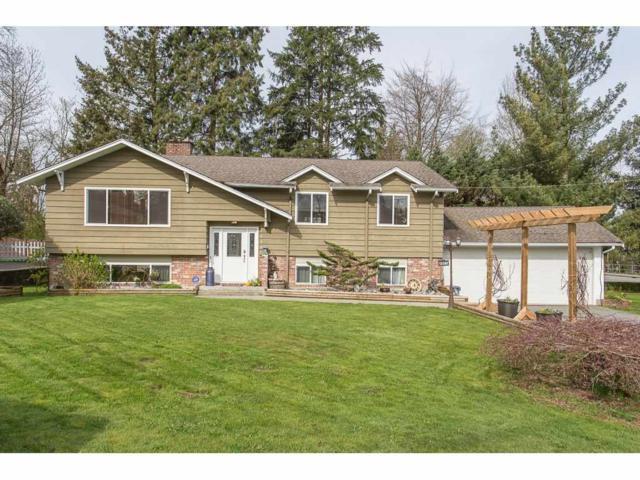 12387 Moody Street, Maple Ridge, BC V2X 5M8 (#R2258400) :: West One Real Estate Team