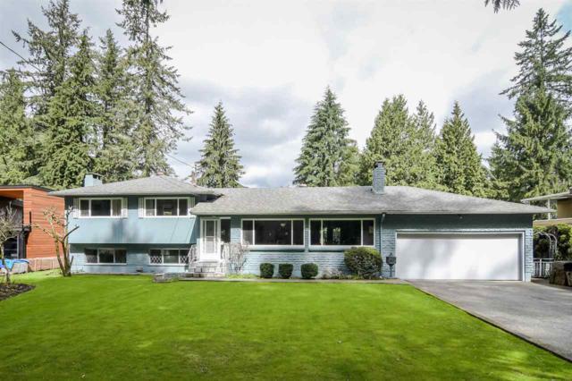 21455 124 Avenue, Maple Ridge, BC V2X 4H4 (#R2258539) :: West One Real Estate Team