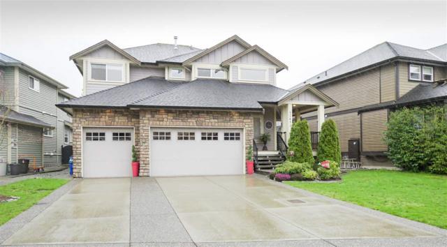 12452 201 Street, Maple Ridge, BC V2X 4L4 (#R2258833) :: West One Real Estate Team