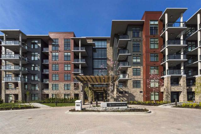 5011 Springs Boulevard #508, Delta, BC V4M 0B6 (#R2258846) :: West One Real Estate Team
