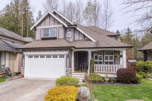 21673 93 Avenue, Langley, BC V1M 4E1 (#R2258909) :: West One Real Estate Team