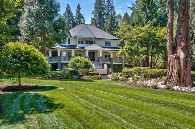16258 30B Avenue, Surrey, BC V3Z 0E3 (#R2258912) :: West One Real Estate Team